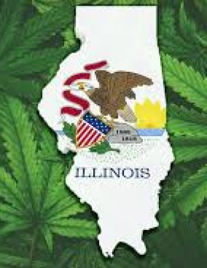 Illinois Craft Grower License Application Templates
