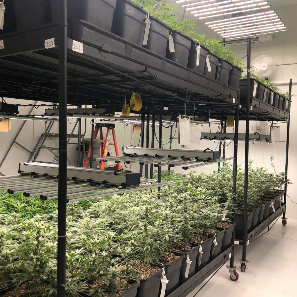 Vertical Grow Facility Layout